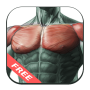 icon Best Chest Workout