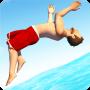 icon Flip Diving