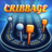 icon Cribbage 2.0.8